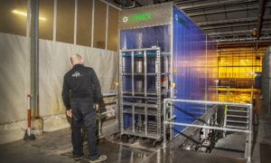 Limex trolley washer helps improve hygiene at WPK Vegetable Plants