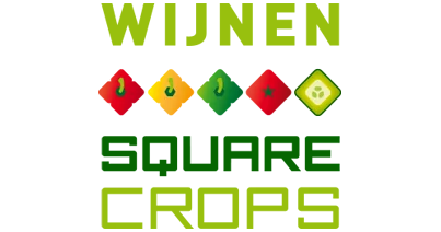 Intensive and sustainable crate washer for Wijnen Square Crops